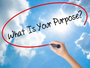 purpose in business